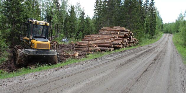 Riskerna i skogen kartläggs