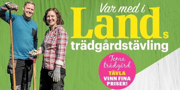 AVSLUTAD: Delta i Lands trädgårdstävling – och vinn ett presentkort på 5000 kronor