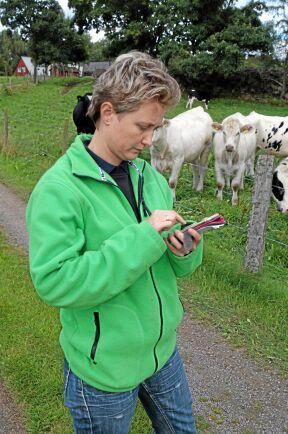 Anna Ericsson kollar tillväxten under betesperioden på två gårdar i Skåne.
