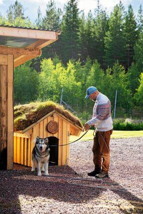 Cheyas hundkoja har Ulf specialbyggt med extra isolering för att hålla den sval sommartid.