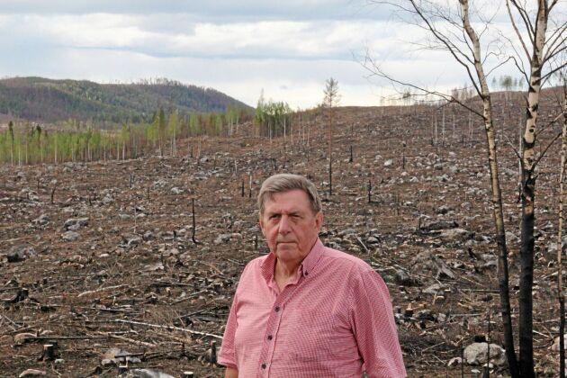 2017 genomförde Björn Brink flera första- och andragallringar för att sätta fart på skogstillväxten på fastigheten nära Kårböle i Hälsingland. Ett år senare brann det mesta upp.