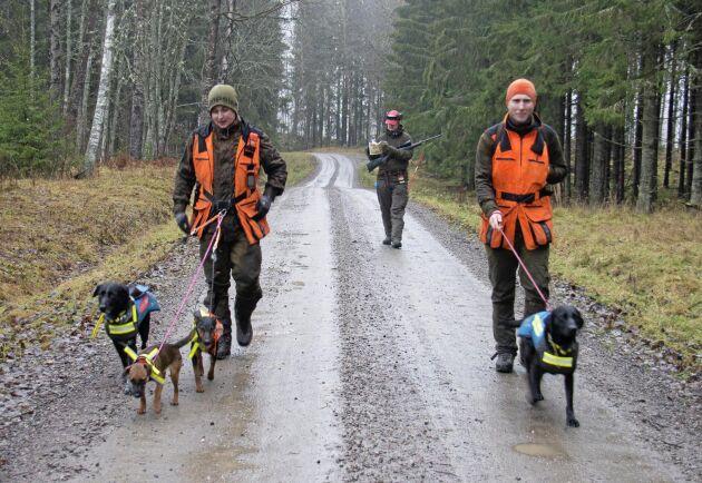 Första såten avklarad och 12 vilt ligger. Hundförarna är på väg till bilen för att byta kläder och hundar.
