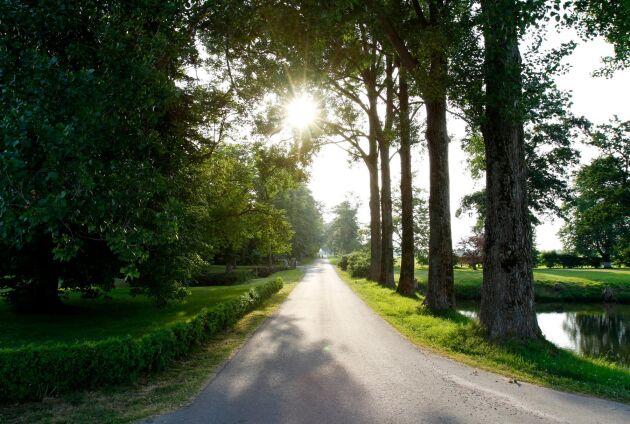 Till slottet tillkommer 9 hektar åkermark, 2 hektar betesmark och 27 hektar övrig mark.