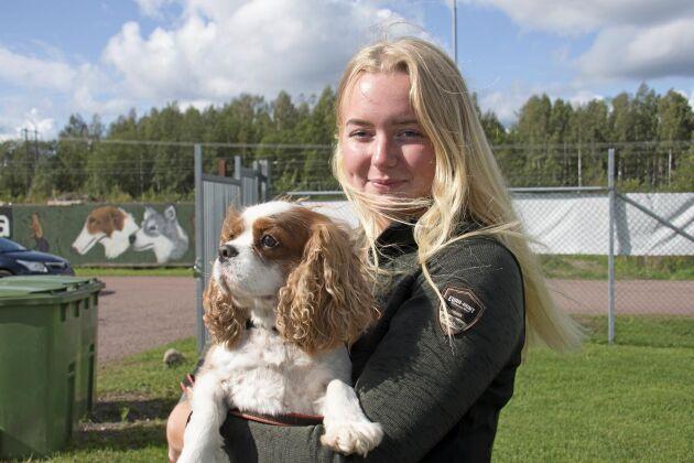 Hundförare inom försvaret eller polisen, det är vad Amanda J Andresen drömmer om.