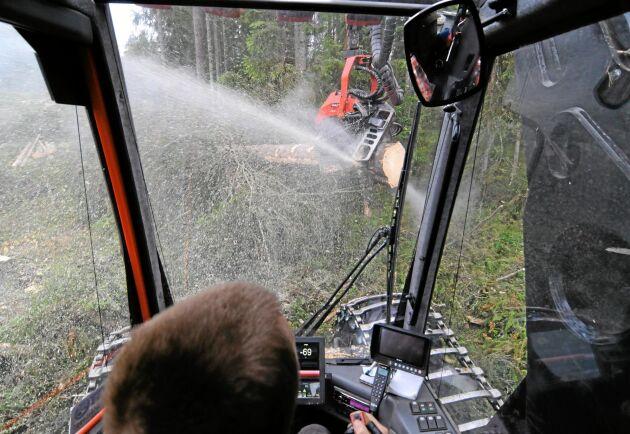 I Svealand och Norra Norrland är det stort intresse att avverka. I Götaland och Södra Norrland är minskar i stället avverkningsanmälningarna.