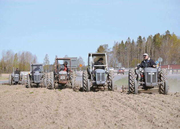 Nu har våren kommit till Västmanland och fem Grållar kommer harvande på fältet. Nu är det vår!