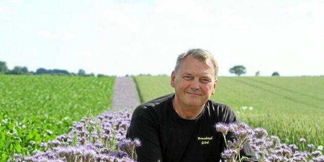 Lantbrukare vill gynna humlor och bin