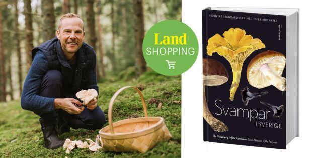 Svampar i Sverige – pålitlig och vacker handbok med över 400 arter