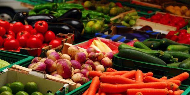 Ge maten längre liv – 8 tips på bra förvaring