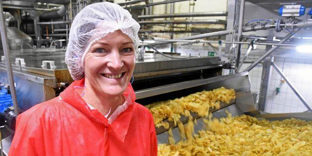 Potatisodlare sökes – Fredagsmysets kung ska bli ännu svenskare