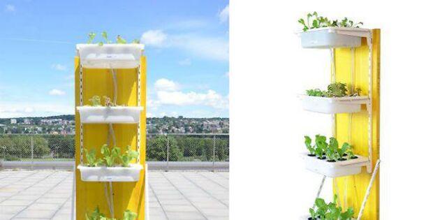 Satsa på hydroponics – 3 sätt att high tech-odla med prylar du hittar på Ikea