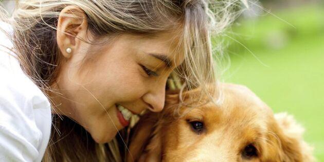 9 skäl till att hundar är bäst – enligt hundägarna