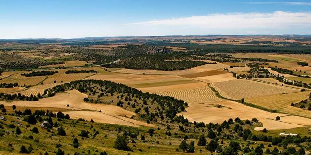 Jordbruket i Sydeuropa lider