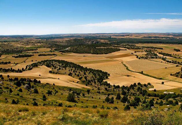 Klimatet har gått hårt åt länderna i södra Europa och nu kräver bland annat spanska bönder förskott på EU-stöden.