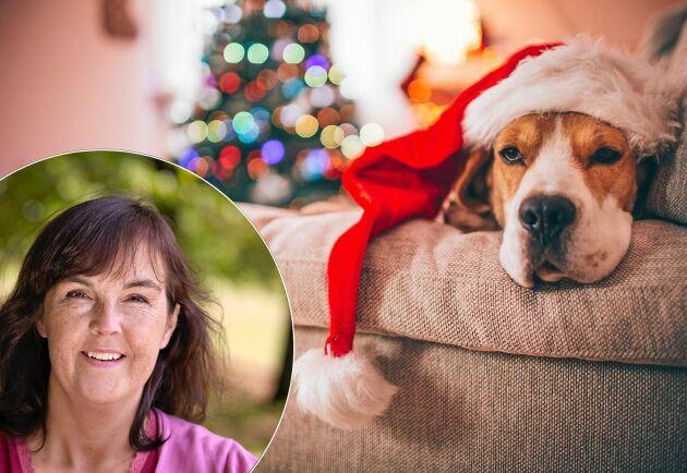Somna i soffan är inget nederlag. Erkänn, det är så julen ser ut.