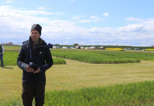 Paul Leteus växtodlingsrådgivare på HIR Skåne berättar att nollrutorna skvallrar om att marken inte levererar mycket kväve i år.