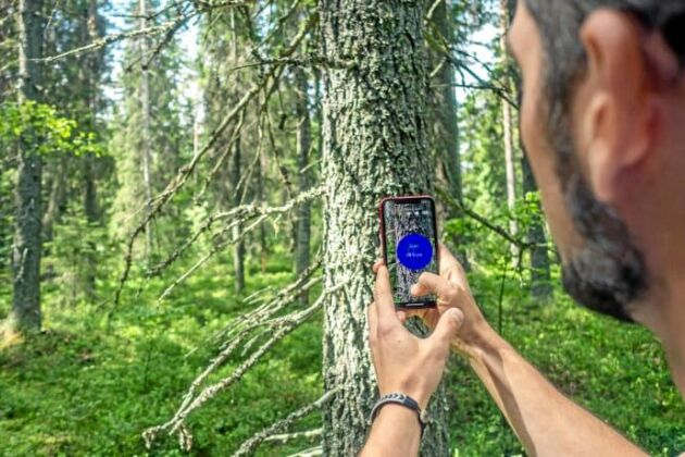 Arboreal Skog är en ny app för att mäta skog.