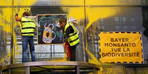 Fransk bonde får rätt mot Monsanto