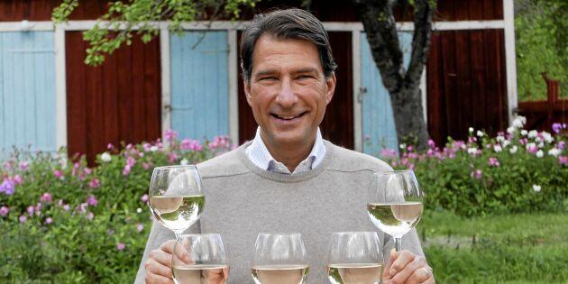 Härliga viner till höstens smaker! Oavsett vad du har på tallriken...
