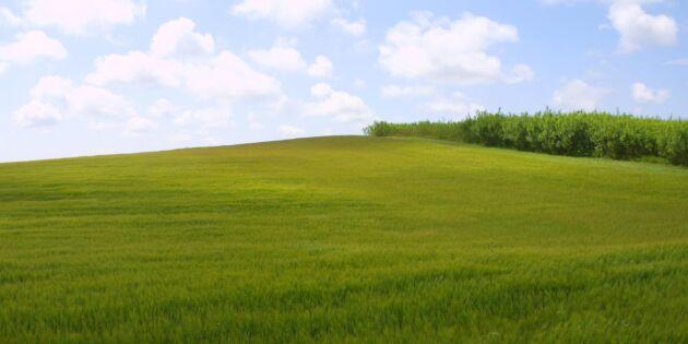 Region Skåne kräver ändrad minerallag