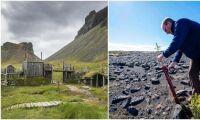 Island vill ha tillbaka sin skog – höggs ner av vikingar
