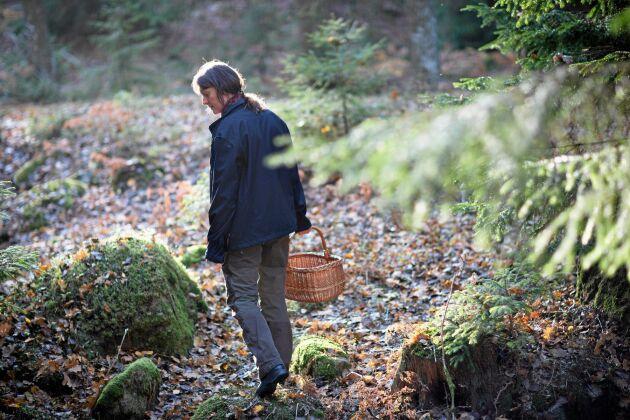På hösten och under sommaren syns Erika ofta ute i skogen för att plocka blåbär och lingon.