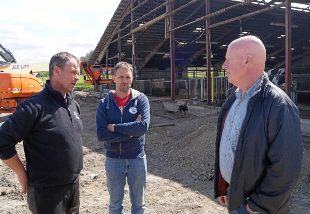 Magnus Karlsson (längst till vänster) på Carlsro gård i Varbergs kommun har fått nej till att använda sand i liggbåsen. Han backas upp av kollegan Lars Svensson (mitten) och Anders Richardsson (till höger), ordförande i LRF Halland.