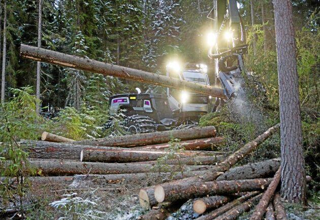 En vägledning från Skogsstyrelsen om till exempel miljöhänsyn vid avverkning kan inte överklagas enligt Högsta förvaltningsdomstolen.