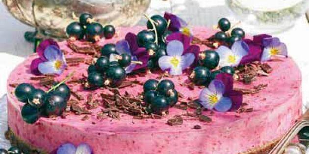 Svartvinbärscheesecake med chokladbotten