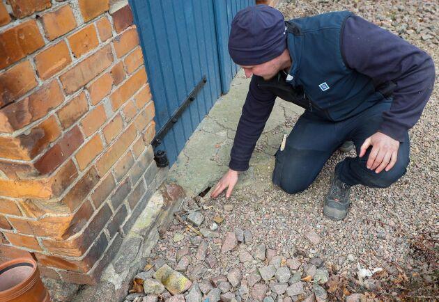 Indikation. För det här hålet lägger Tobias Arnfeldt små stenar. Är de borta vid nästa besök kan han anta att det springer råttor här som puttat undan dem.