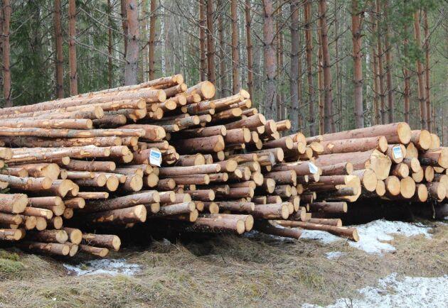 Prisnivåerna är inte historiskt höga, visar Land Skogsbruks prisanalys.
