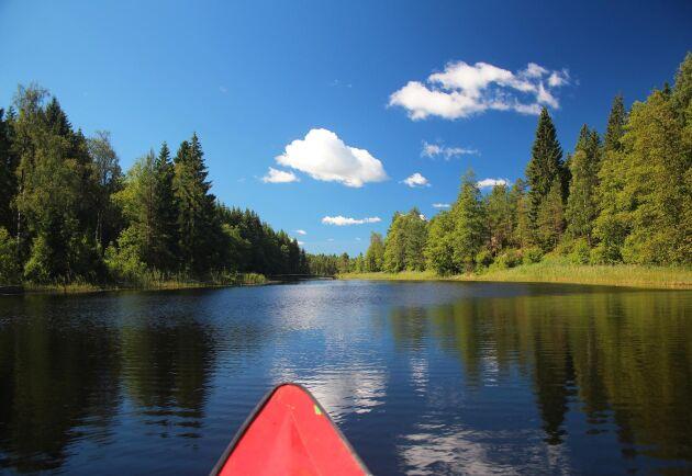 Att få uppleva den svenska naturen lockar många turister.