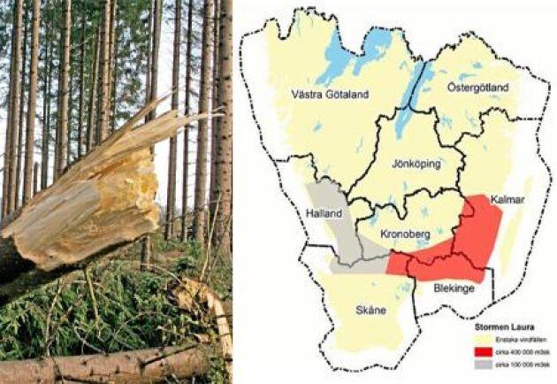 De första inventeringarna visar att stormen Laura blåste ned en halv miljon kubikmeter skog, mestadels i Blekinge och Kalmar.