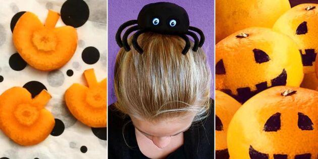 8 busläskiga tips till Halloween
