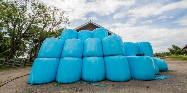 Oskäliga priser och bedrägerier efter torkan