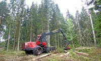 Klirr i kassan för finländska skogsägare