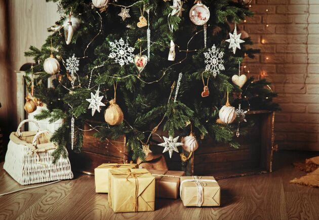 Ställ inte stammen platt mot julgransfoten eftersom det försvårar upptaget av vatten.