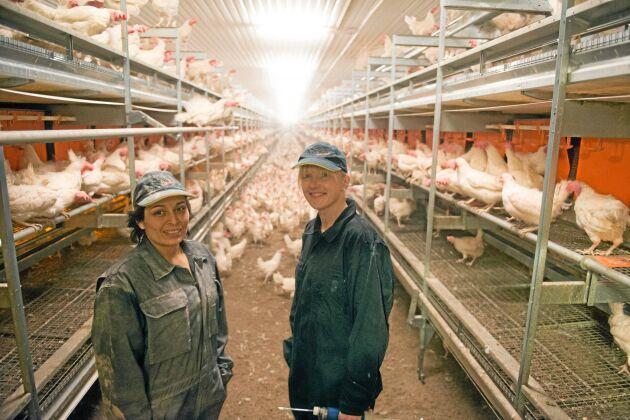 För personal som gör sitt bästa för djuren blir intrång från djurrättsaktivister ett personangrepp, anser Theresa Salwén, förman på Stjernsunds gård.