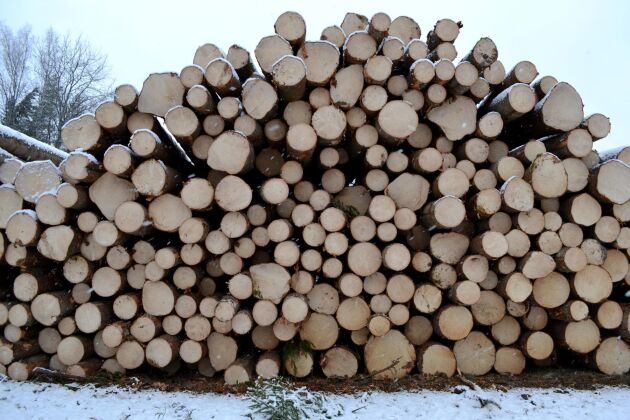 Referensnivån ska användas för att se till att den svenska skogen inte släpper ut mer växthusgaser än den tar upp.