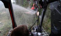 Högtryck för avverkningar i Götaland