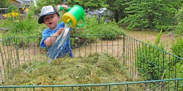 Gör racerkompost med bara gräsklipp och vatten