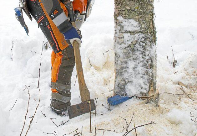Med 30 förslag på åtgärder vill Skogsstyrelsen få högre fart i skogsnäringens jämställdhetsarbete.