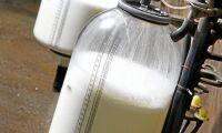 Stort prisfall på senaste Global Dairy Trade