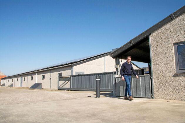 Grisgårdar i den storleksordning som Peter Vermeire driver förlorade 50 000–60 000 euro under det första halvåret efter utbrottet av svinpest.