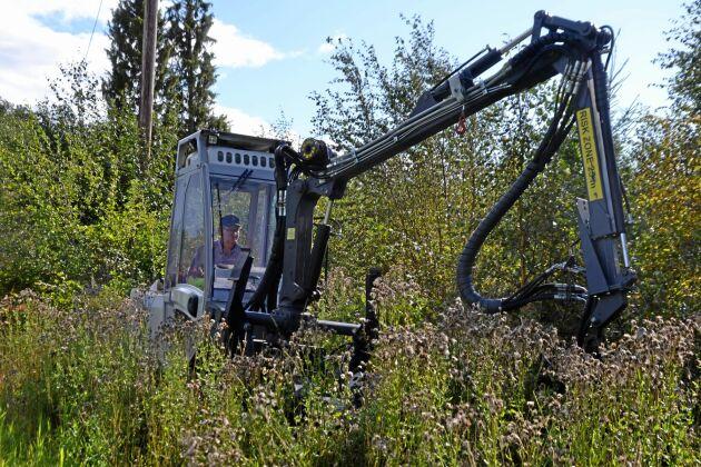 En maskin kan klara upp till 70 procent av röjningen, sedan får manuell arbetskraft ta vid.