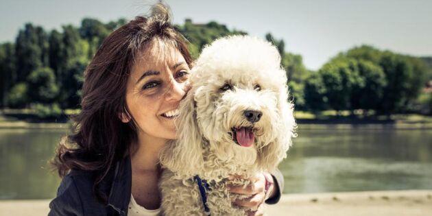 Kom i form med bästa vännen! Här är 9 lätta hälsoråd för dig och din hund