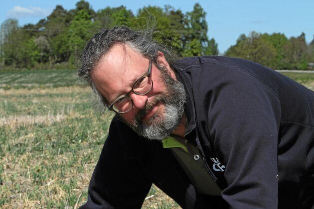 Direktsåddfantasten Adam Giertta testar med ekologiskt på en fjärdedel av arealen men tänker inte börjar plöja.