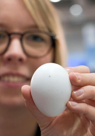 Pyttehål. Med laser görs ett litet hål i ägget för att kunna göra hormontestet.