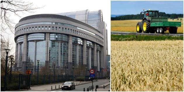 Stor risk att jordbruksreform försenas
