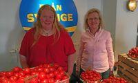 Belysning på vintern kan öka svenska tomatproduktionen